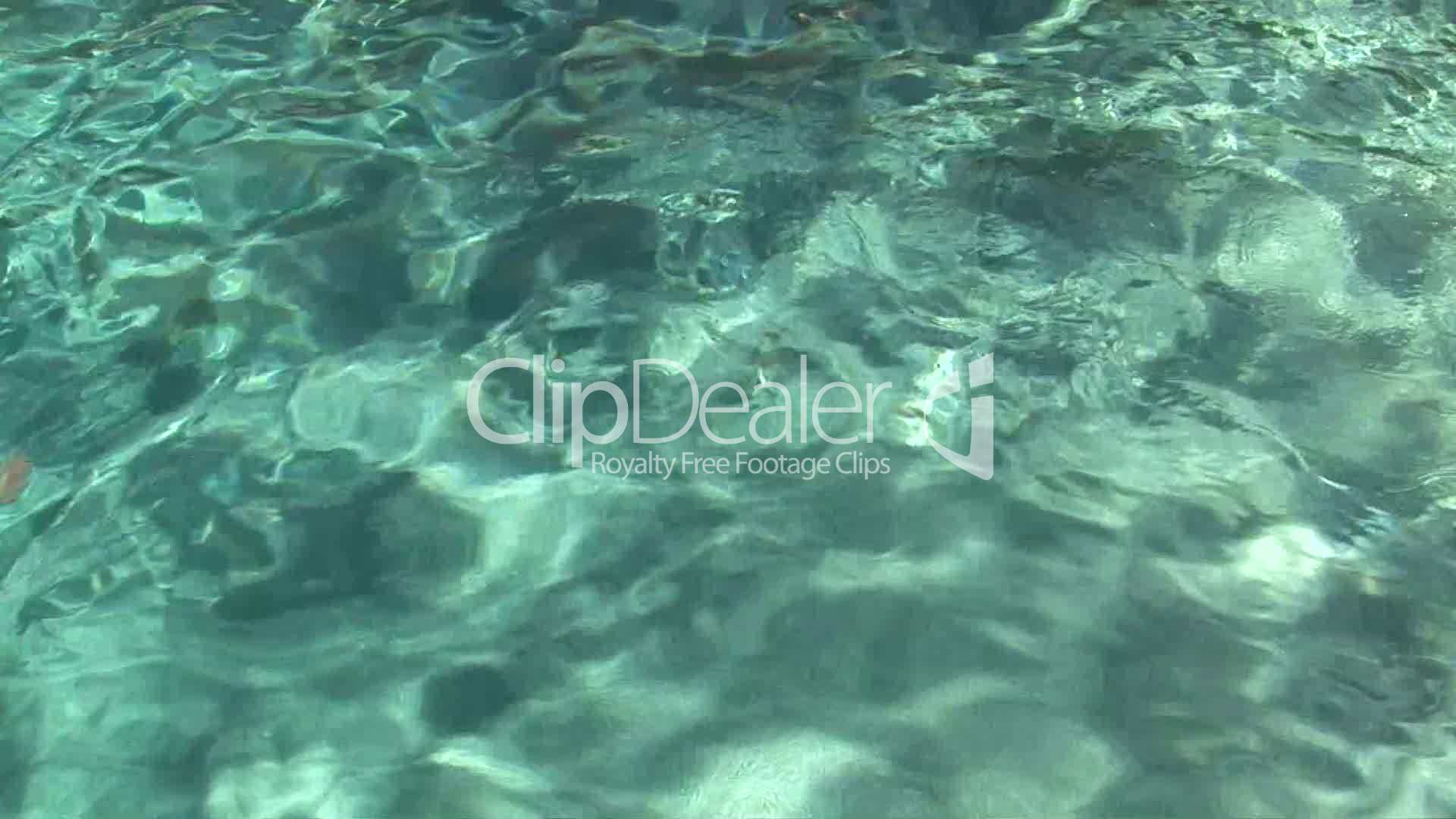 Young Boy and Woman Swimming Underwater: Royalty-free ...