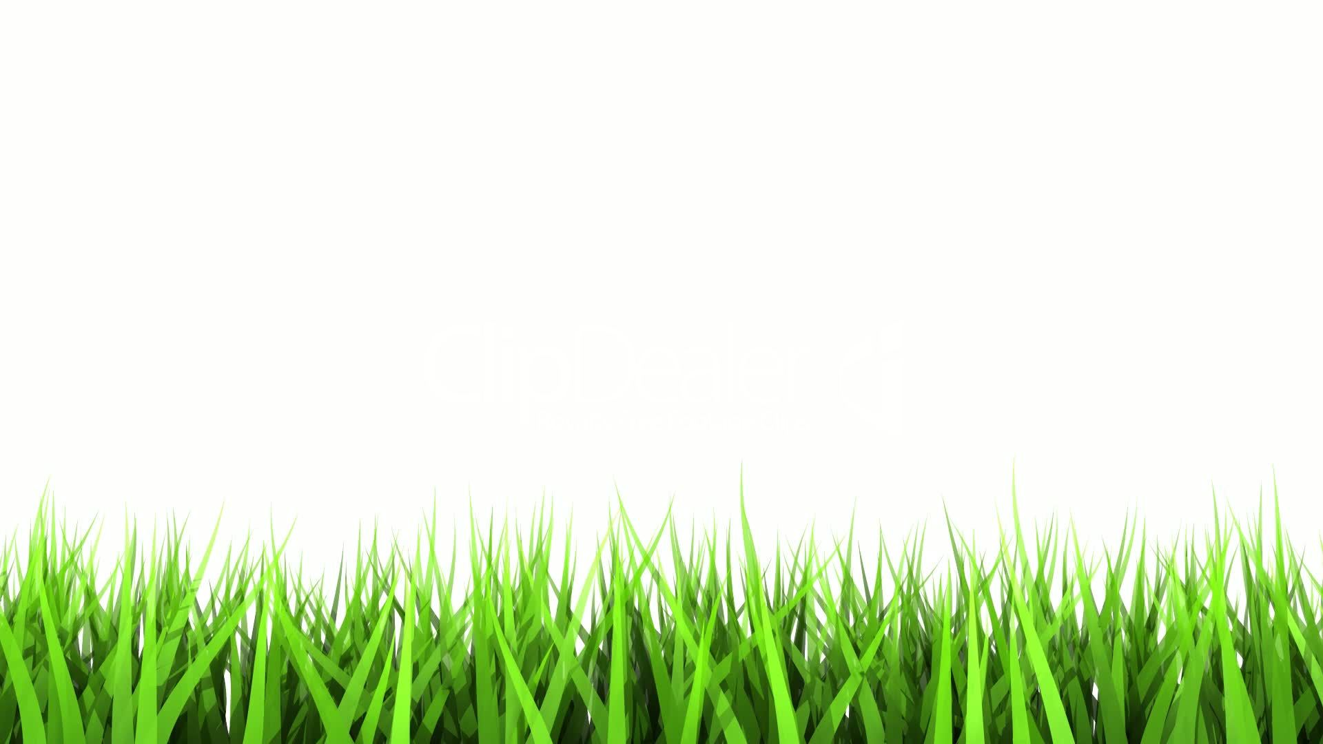 green grass on white background matte channel royalty