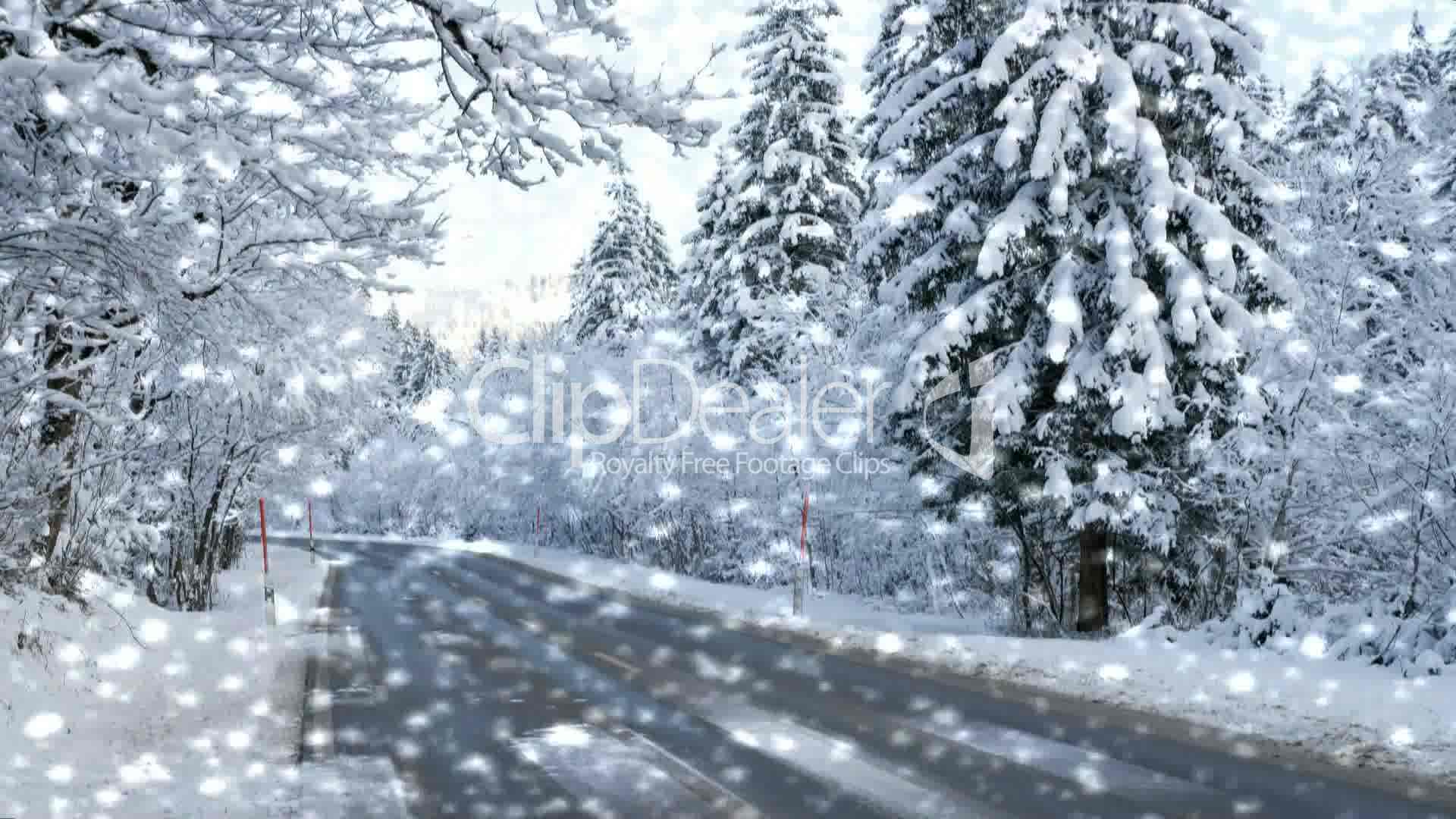 Federal Tires Dealer >> Straße im Winter mit Schneefall - Street Winter with Snow: Royalty-free video and stock footage