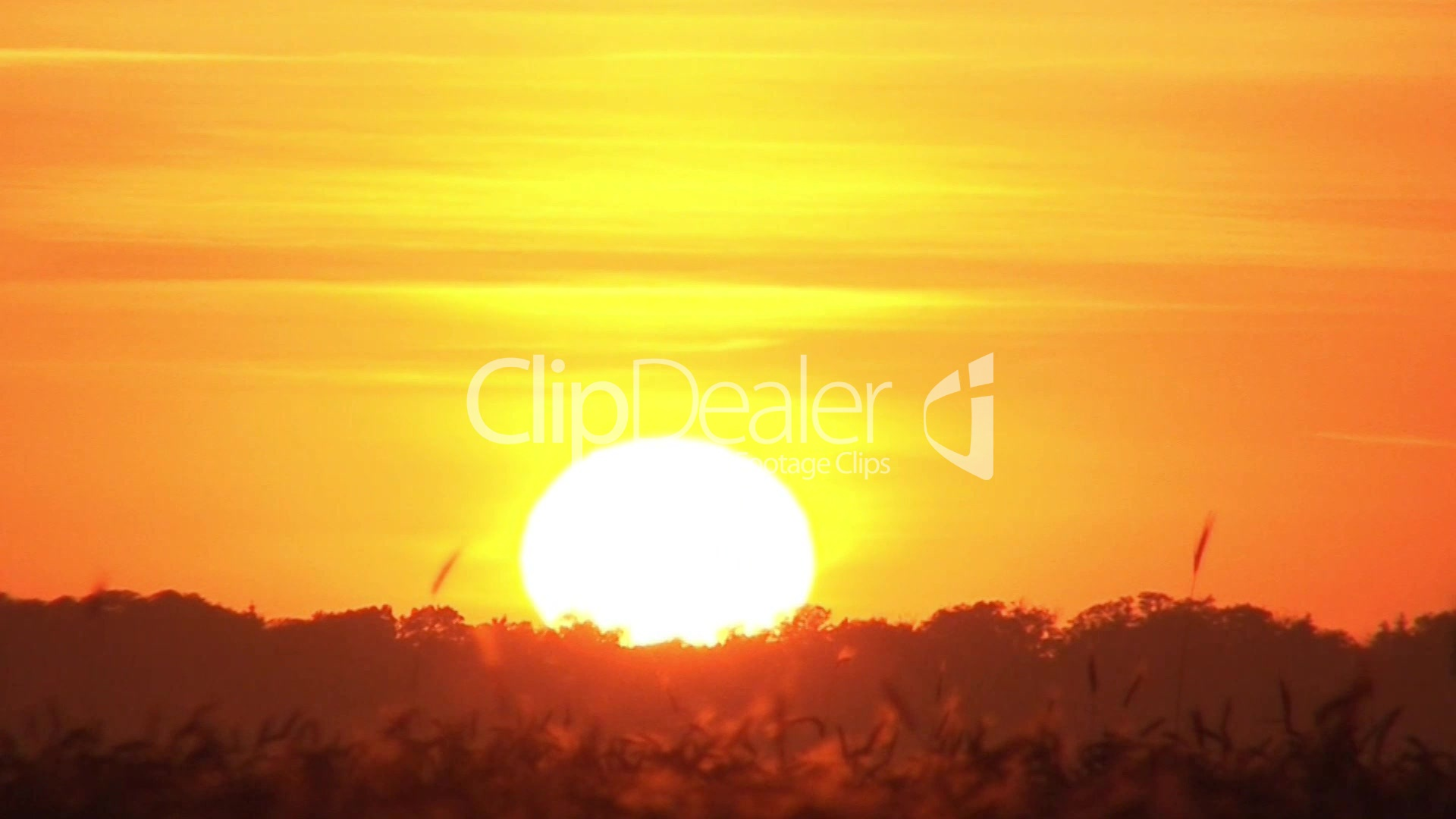 Sonnenuntergang: Royalty-free video and stock footage