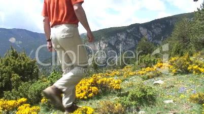 Wanderer in Bergwiese