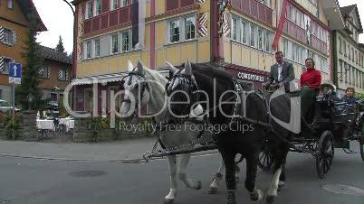 Kalesche, Pferd
