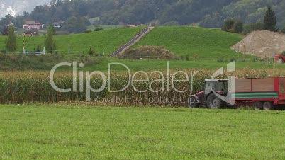 Agrikultur, Landwirtschaft, Mais, Traktor