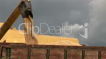 Stock Footage - Agriculture