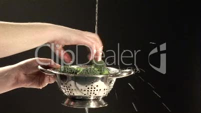 Stock Footage of Cleaning Brocoli
