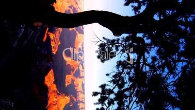 Grand Canyon USA bei Sonne