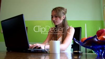HD1080i Young girl working with laptop indoor