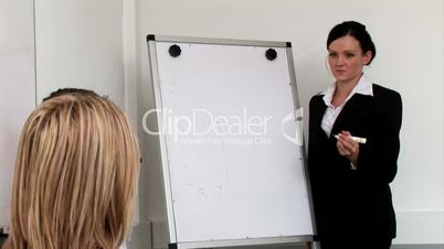 Woman giving a Business Presenation