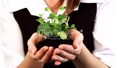 Woman Holding a plant in her hand