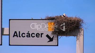 Nahaufnahme - Storchennest auf Straßenschild in Portugal