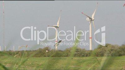 Windkraft im Grünen