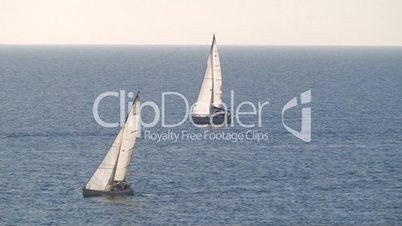 Sailboats in regatta in sea