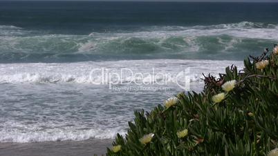 Wellen am Atlantik in Portugal