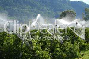Obstanbau in Südtirol