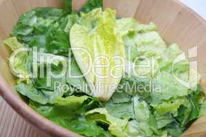 Römer Salat