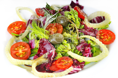 Fenchel Tomaten Salat