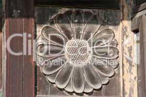 Chrysanthemum Carving