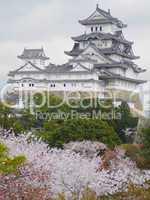 Japanese Castle Himeji-jo
