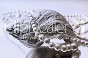 Perlenkette mit Muschel