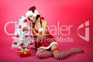 Weihnachtsfrau mit Baum 2