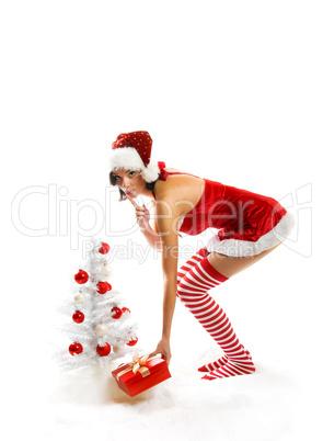 Weihnachtsfrau mit Baum 3