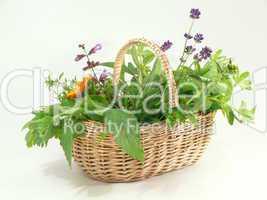 gefüllt mit frischen Gartenkräutern