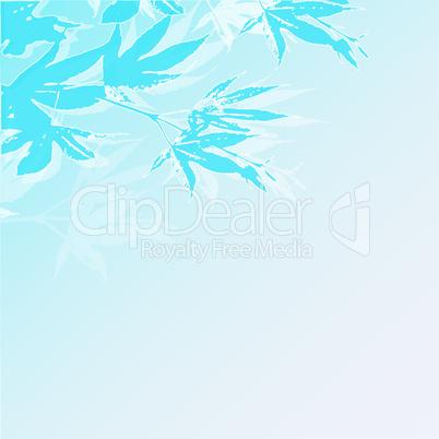 maple turquoise
