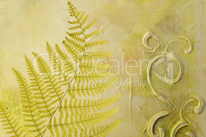 pressed fern leaf
