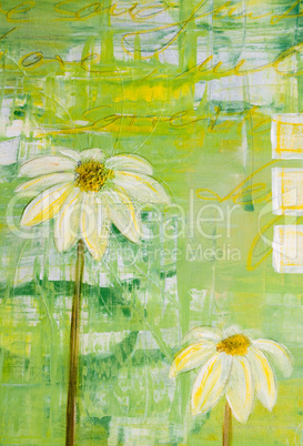 Painted daisy flowers