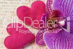 orchid flower and hearts