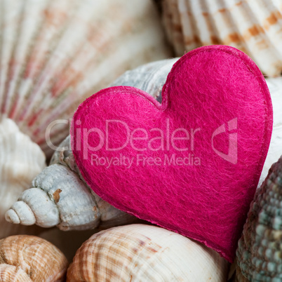 Still-life with shells and heart
