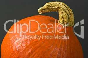 Kürbis, pumpkin