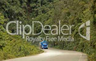 Straße im Regenwald
