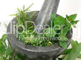Gartenkräuter im Mörser