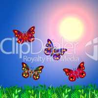 Schmetterlinge bei Sonnenaufgang
