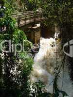 Iguacu Wasserfälle Arg10