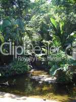 Vogelpark Brasilien Teich 01