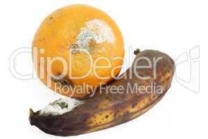Verschimmelte Früchte
