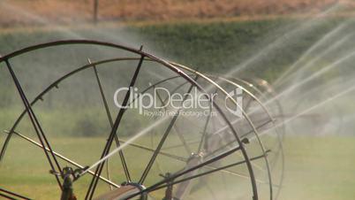 farm sprinkler