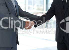 Handshake in agreement