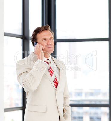 Mature businessman on phone