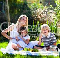 Mother and her children playing in a picnic