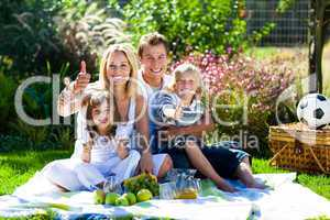 Happy family having a picnic with thumbs up