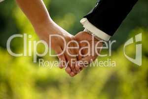 Brautpaar Hand in Hand / Wedding Couple