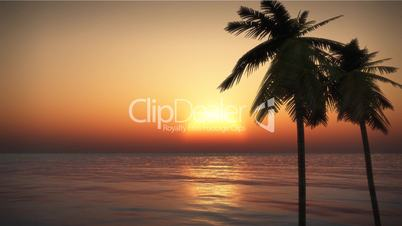 (1070) Looping Tropical Island Sunset with Palms and Ocean Surf HD Video Animation