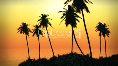 (1063) Tropical Island Sunset with Palms and Ocean Surf and Fog HD Video Animation