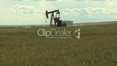 Oil pump jack in wheat field 11