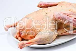 roher Gänsebraten, raw roast goose