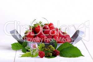 Himbeeren, Erdbeeren mit Brombeerblüten