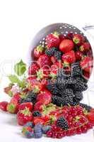 Beerenmischung mit Küchensieb